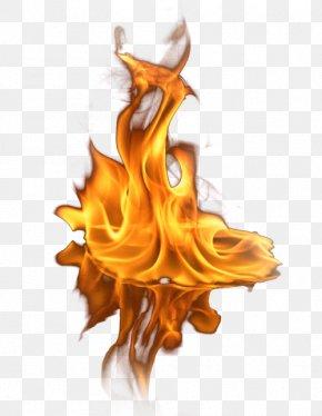 Fire - Light Fire Flame Clip Art PNG