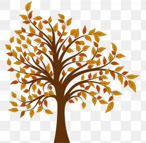 Fall Tree Clipartsr - Tree Autumn Clip Art PNG