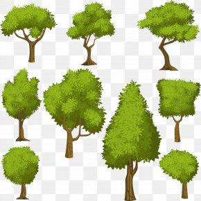 Vector Cartoon Green Tree - Tree Euclidean Vector Shrub Illustration PNG