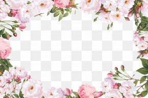 Flower Border - Script Typeface Sans-serif Calligraphy Font PNG