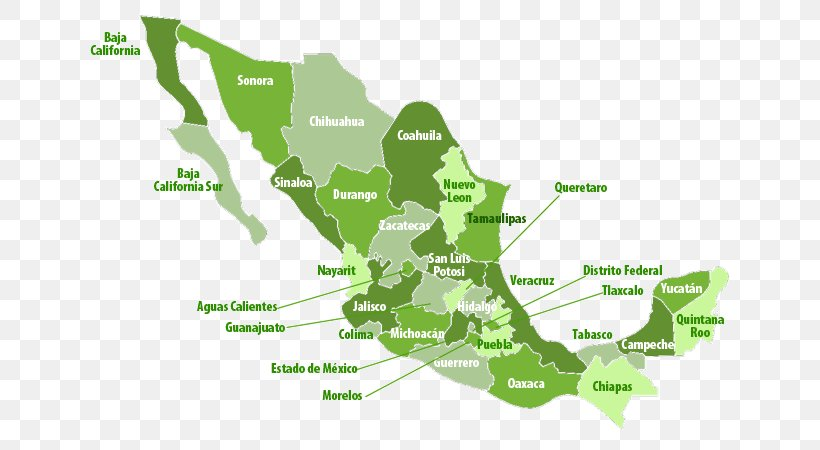 Google Maps Mexico City Land Flag Of Mexico, PNG, 650x450px ...