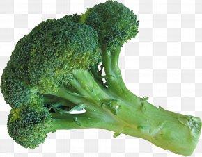 Cauliflower - Broccoli Cauliflower Vegetable Food Ingredient PNG