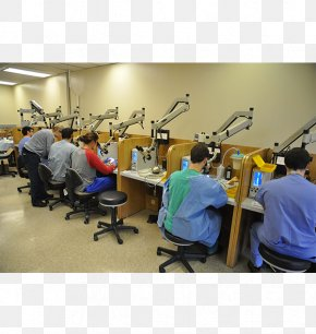 Memorial Weekend - Temporal Bone Dissection Course University Of Tennessee PNG