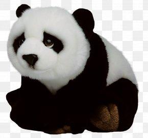 Giant Panda - Giant Panda Red Panda Vecteur PNG