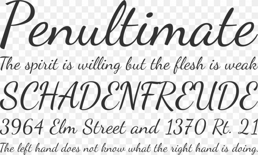 Script Typeface Font Family Open-source Unicode Typefaces Typography Font, PNG, 1440x869px, Script Typeface, Brand, Calligraphy, Cursive, Font Family Download Free