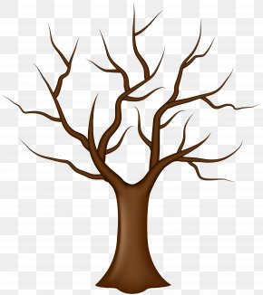 Tree Without Leaves Clip Art - Tree Leaf Clip Art PNG