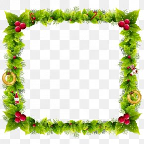 Christmas Flower - Borders And Frames Christmas Day Picture Frames Clip Art Vector Graphics PNG