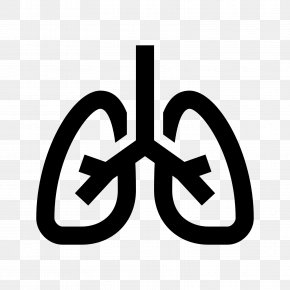 Lungs - Lung Symbol PNG