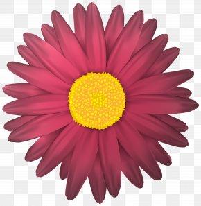 Flower Transparent Clip Art Image - Flower Clip Art PNG