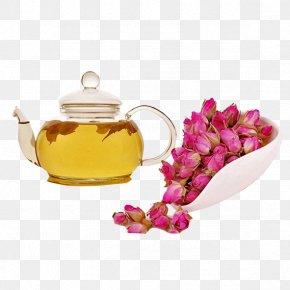 Rose Tea - Flowering Tea Beach Rose Rosa Chinensis PNG