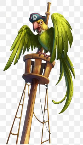 Pirate Parrot With Green Cap - Parrot Macaw Piracy PNG