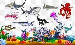 Vector Sea Creatures - Shark Graphic Design Illustration PNG