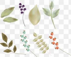 Vector Hand-painted Leaves - Petal Leaf Flower Illustration PNG