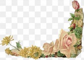 Flower - Borders And Frames Floral Design Flower Rose Clip Art PNG