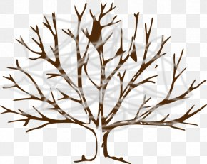 Tree - Drawing Tree Branch Clip Art PNG