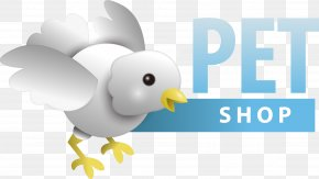 Vector Bird Chick Pet Shop Standard - Bird Pet Shop Dog PNG