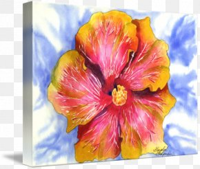 Painting - Hibiscus Watercolor Painting Floral Design Art PNG