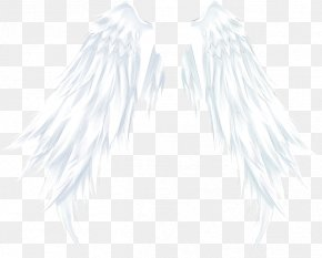 White Angel Wings - Outerwear White Black Pattern PNG