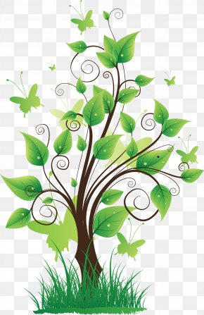 Tree Image - Nature Clip Art PNG
