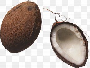 Coconut Image - Coconut Milk Juice Nucule PNG