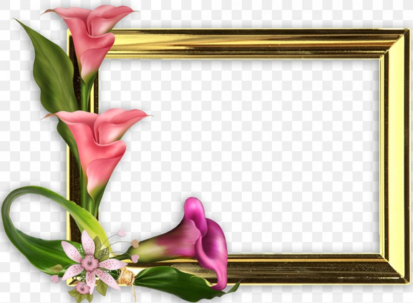 Mother's Day International Women's Day Woman Picture Frames, PNG, 998x732px, Mother S Day, Art, Baby Shower, Cut Flowers, Father Download Free