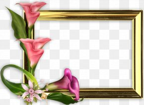 Mother's Day - Mother's Day International Women's Day Woman Picture Frames PNG