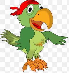Pirate Parrot - MacNider Art Museum Parrot Jokes: Clean Jokes Chicken Jokes PNG