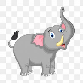 Cartoon Elephant - Cartoon Elephant Illustration PNG