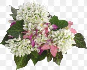 Shah Rukh Khan - Flower Bouquet Snowdrop PNG