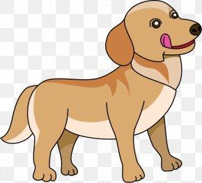 Dog Illust - Nova Scotia Duck Tolling Retriever Puppy Dog Breed Companion Dog Ogino Animal Clinic PNG