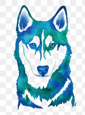 Vector Watercolor Husky - Siberian Husky Watercolor Painting Canidae PNG