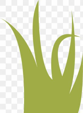 Lake Clipart - Leaf Logo Grasses PNG