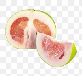 Grapefruit Section - Grapefruit Banpeiyu PNG