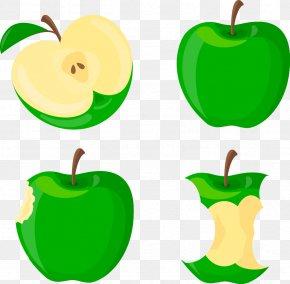 Vector Green Apple - Apple Euclidean Vector Clip Art PNG
