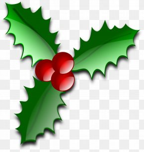 Holly Image - Common Holly Christmas Leaf Clip Art PNG