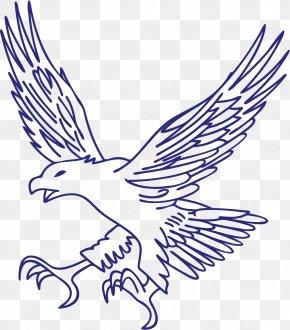 Blue Eagle - Eagle Hawk PNG