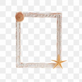 Shell Frame - Picture Frame Photography Clip Art PNG