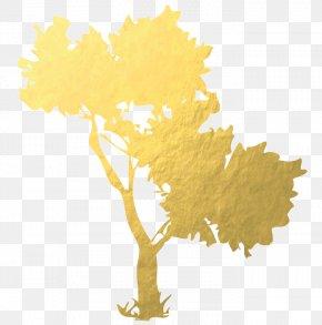 Gold Foil Paper - Gold Leaf Argan Oil Foil PNG