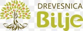 Design - Floral Design Brand Leaf Font PNG