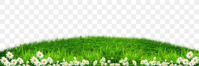 grass wallpaper png 5906x1975px green artificial turf computer graphics energy grass download free grass wallpaper png 5906x1975px