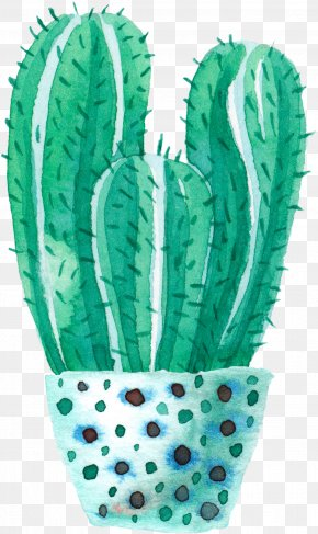 Watercolor Potted Cactus - Cactaceae Watercolor Painting PNG