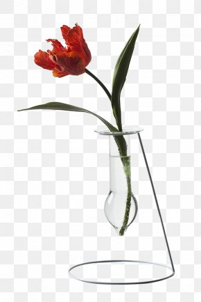 Petal Lily Family - Lily Flower Cartoon PNG