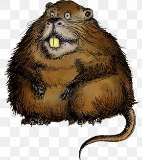 Copy - Coypu Rodent Beaver Animal PNG