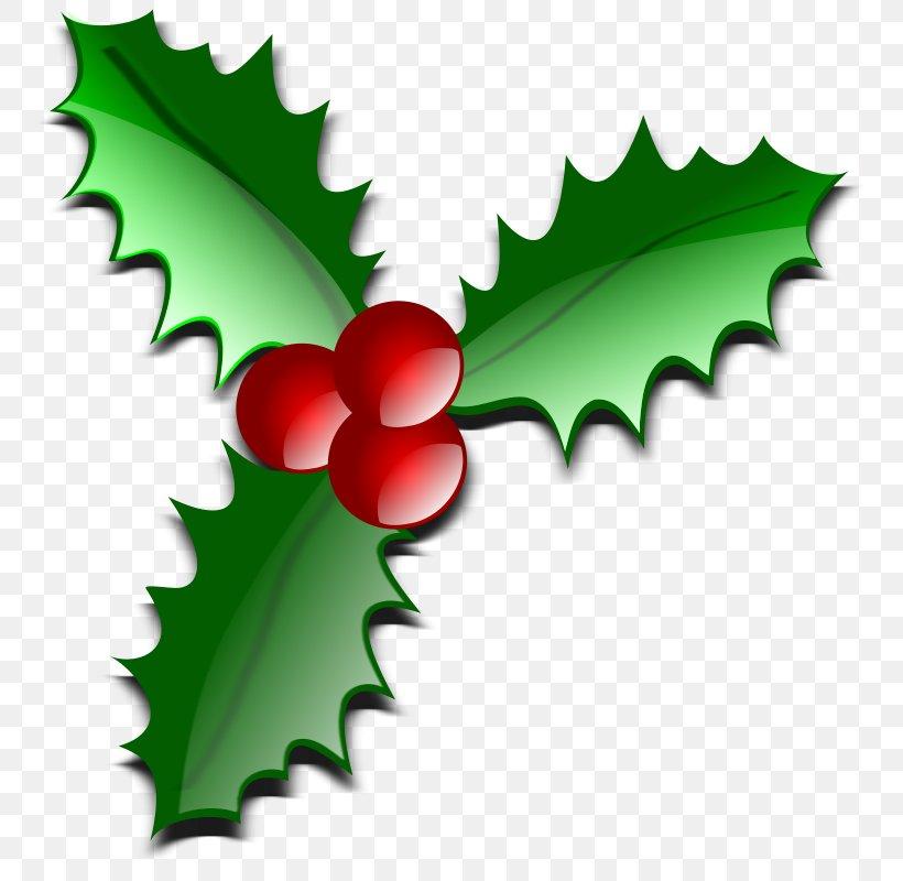Christmas Santa Claus Clip Art, PNG, 761x800px, Christmas, Aquifoliaceae, Aquifoliales, Christmas And Holiday Season, Christmas Decoration Download Free