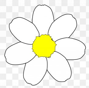 Free Daisy Clipart - Common Daisy Free Content Clip Art PNG