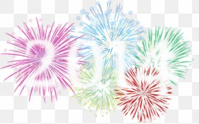 Spend Flowers On New Year's Day - New Year's Eve Fireworks Christmas Fond Blanc PNG