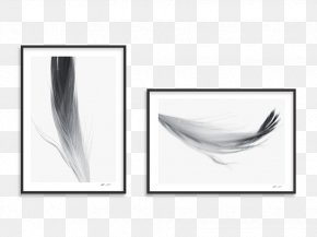Feather - Rectangle Feather Product Design PNG