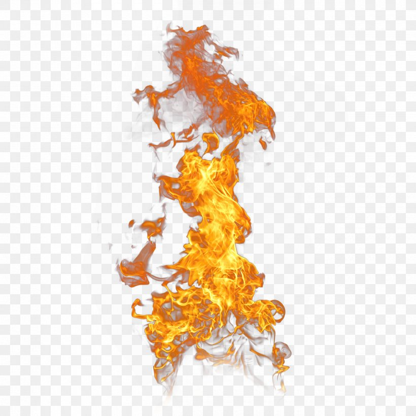 Flame Effect, PNG, 2500x2500px, Flame, Combustion, Fire, Fond Blanc, Orange Download Free