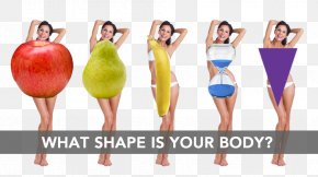 Lean Body Figure - Female Body Shape Human Body Fashion Waist PNG
