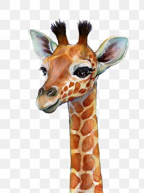 Giraffe - Watercolor Painting Giraffe Art Portrait PNG
